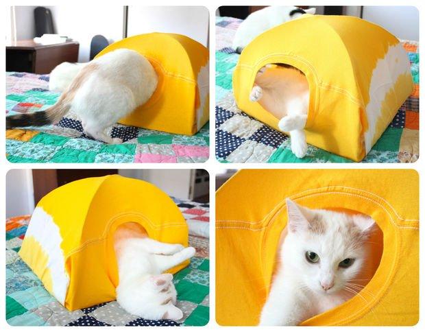 barraca-para-gatos