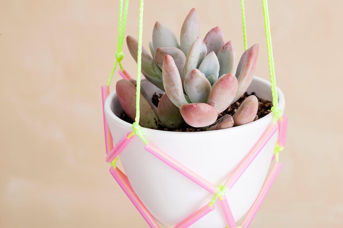 Como fazer suporte para pendurar plantas mania de decora o for Como criar caracoles de jardin