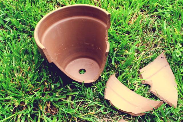 minijardim-em-um-vaso-quebrado