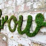 Como fazer grafite de musgo – superfácil!
