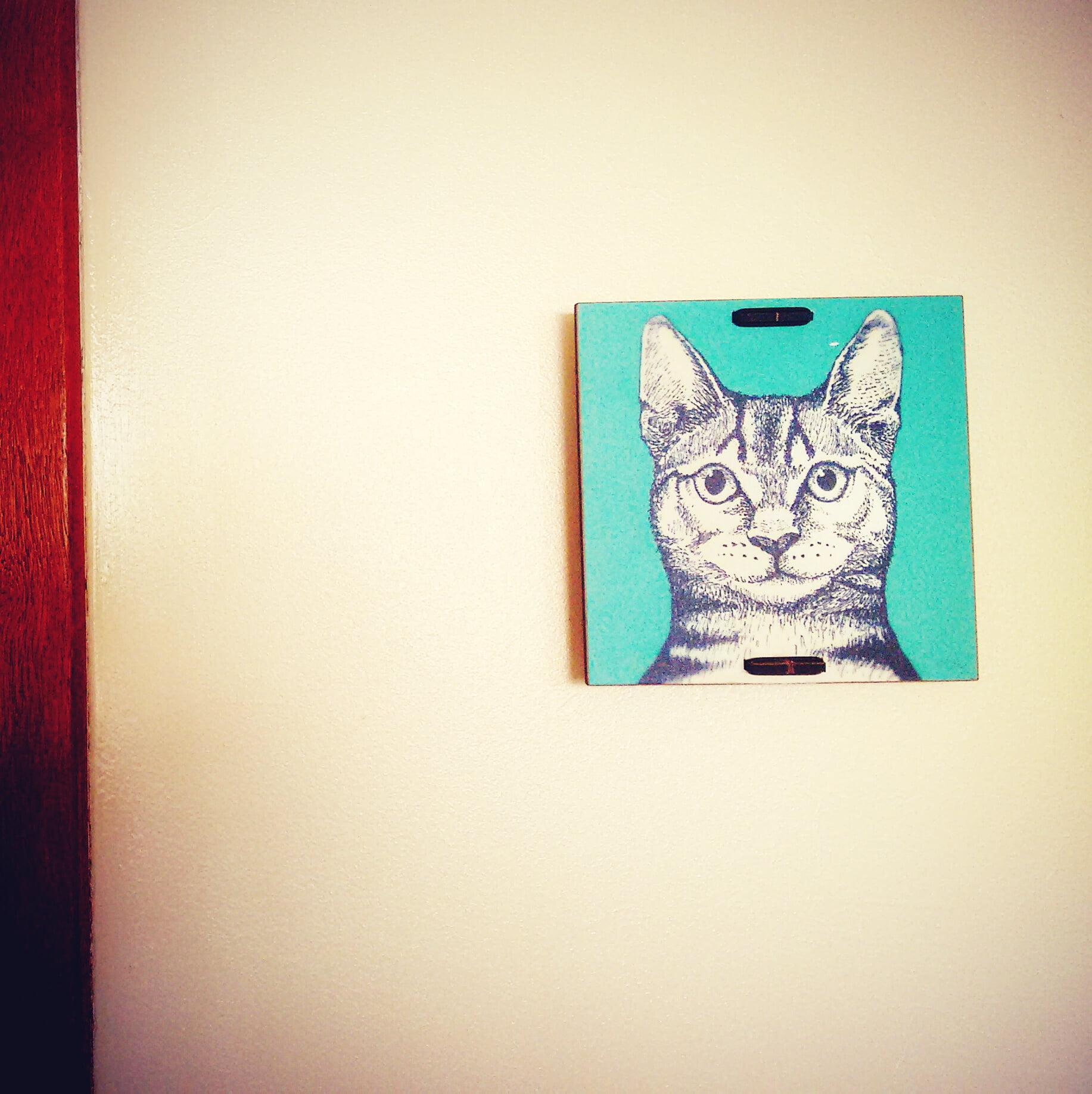 decoracao-criativa-para-a-parede (3)