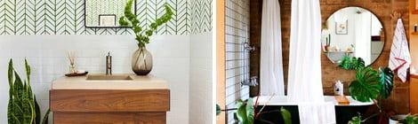Decoração de banheiro - quais as plantas ideais para este ambiente?