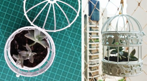 Gaiola na decoração - DIY - vaso para suculentas