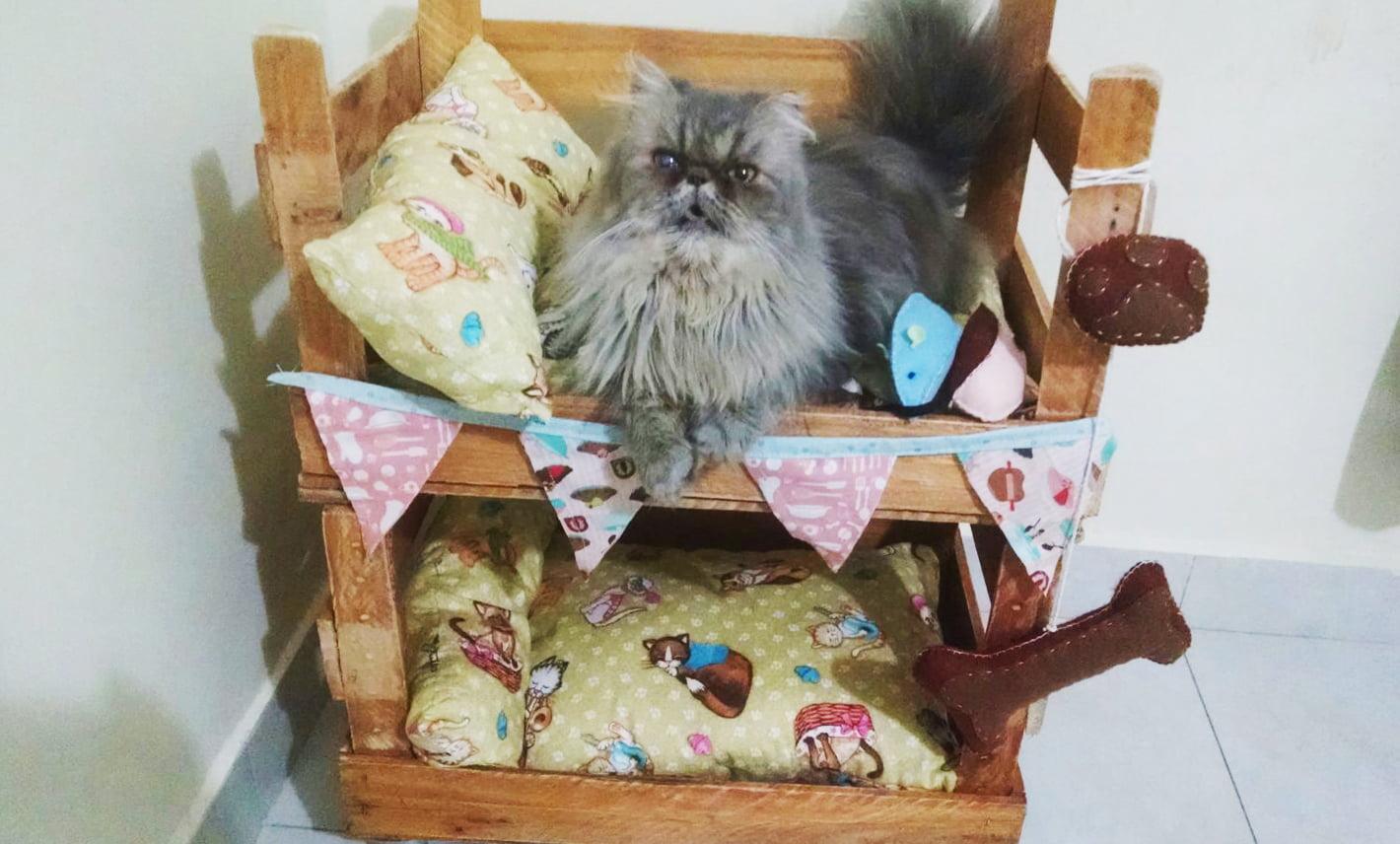 como-fazer-beliche-para-gatos-com-caixotes