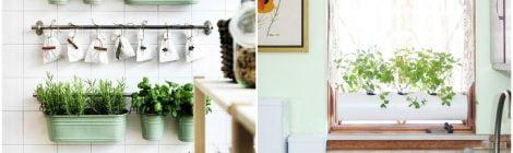 12 ideias para plantar ervas e temperos na sua cozinha