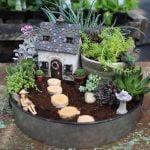 Como fazer um mini jardim de suculentas encantador