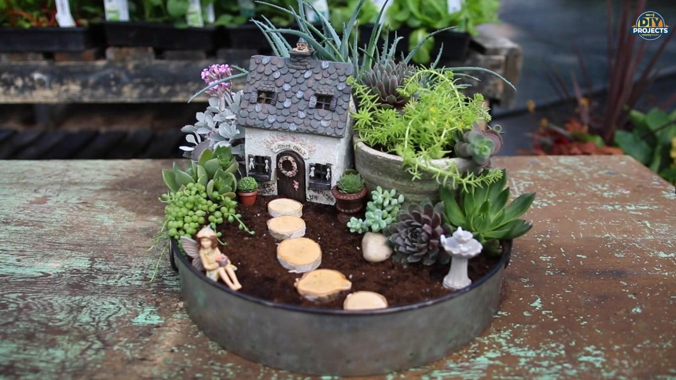 como fazer um mini jardim de suculentas encantador mania de decora o. Black Bedroom Furniture Sets. Home Design Ideas