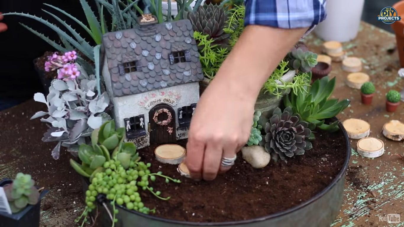Como fazer um mini jardim de suculentas encantador - Mania ...