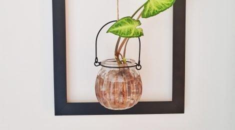 Como fazer um quadro com planta