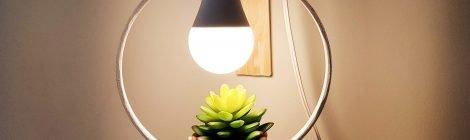 Como fazer Luminária com planta - DIY